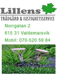 Lillens Trädgård & Fastighetsservice